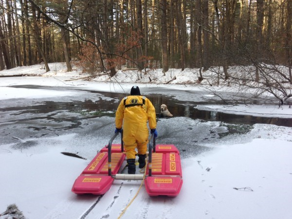 Dog Rescued after Fall through Ice 2014Jan07